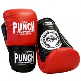 Coach Boxing Gloves/Pads