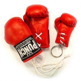 Mini Boxing Gloves Pack